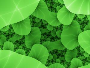 green-bacteria-fractals