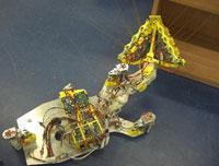 robot rat Meet 6 robots that could improve your life