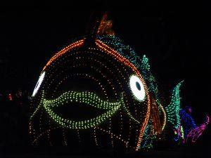 Electric Fish