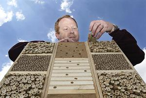 Sainsbury Bee Hotel Supermarket chain welcomes bees to rooftop hotels
